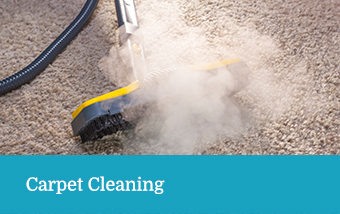 Carpet Cleaning Services - Terry's Steam Cleaning