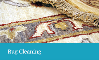 Rug Cleaning Services - Terry's Steam Cleaning
